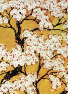 紀尾井ホール・オープニング記念誌 いざ、桜の園へ